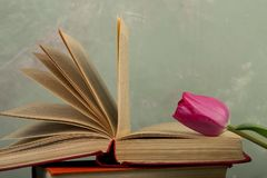 Concept d'éducation - tulipes et livres de fleurs Photos libres de droits