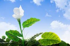 Concept d'énergie, usine d'ampoule écologique Images libres de droits