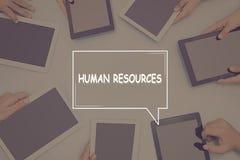 Concept d'affaires de CONCEPT de RESSOURCES HUMAINES Images stock