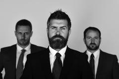 Concept d'affaires et de succès Les hommes d'affaires portent les costumes et les cravattes futés Hommes avec la barbe Photos stock