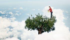 Concept d'agriculture et de reforestation Image libre de droits