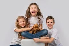 Concept d'amitié d'animal familier d'enfants - enfants jugeant le chiot rouge d'isolement sur le fond blanc Photos libres de droits