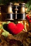 Concept d'amour. Images stock