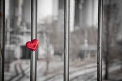 Concept d'amour Image stock