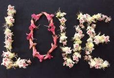 Concept d'amour avec des fleurs Photographie stock libre de droits