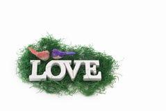 Concept d'amour avec des oiseaux Image libre de droits