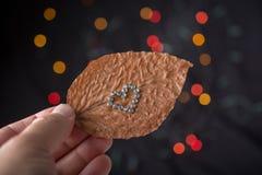 Concept d'amour pour le jour de valentine sur la feuille Photos libres de droits