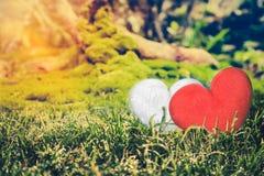 Concept d'amour pour le jour du ` s de Valentine Deux coeurs rouges sur la roche au-dessus du MOIS Photo libre de droits