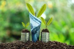 Concept d'argent d'économie avec l'élevage de pile et de billet de banque de pièce de monnaie d'argent Images libres de droits