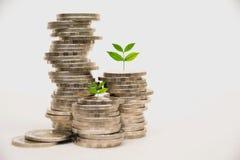 Concept d'argent d'économie avec l'élevage de pile de pièce de monnaie d'argent Photos stock