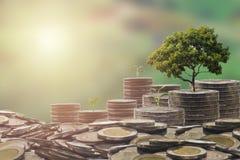 Concept d'argent d'économie Concept d'argent d'investissement Élevage beaucoup lundi photographie stock