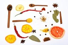 Concept d'art culinaire Composition des cuillères avec des épices et des ingrédients secs Cuillères remplies d'herbes de cuisine  photos libres de droits