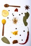 Concept d'art culinaire Cuillères remplies d'herbes et d'épices de cuisine Composition des cuillères avec des épices et sèches photo libre de droits