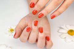 Concept d'art de clou Belles mains femelles image libre de droits