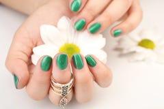 Concept d'art de clou Belles mains femelles avec la manucure tenant la fleur Photos stock