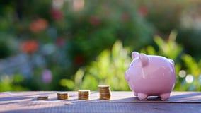 Concept d'augmentation d'investissement et de bénéfice pile d'élevage de pièces de monnaie Photos libres de droits