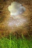 Concept d'Eco avec la terre sèche et l'herbe verte Photographie stock