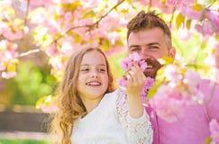 Concept d'enfance Le père et la fille sur les visages heureux jouent avec des fleurs, fond de Sakura Enfant et homme avec l'offre image stock
