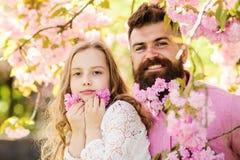 Concept d'enfance Le père et la fille sur les visages heureux jouent avec des fleurs, fond de Sakura Fille avec le papa près de S photographie stock