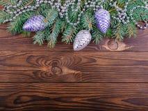 Concept d'hiver de sapin sur un fond en bois brun photo stock