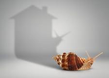 Concept d'immobiliers, escargot avec la maison d'ombre Photographie stock
