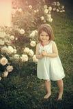 Concept d'innocence, de pureté et de jeunesse photographie stock libre de droits
