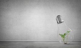 Concept d'innovations d'Eco à l'aide d'ampoule Image libre de droits