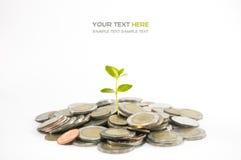 Concept d'investissement Photo libre de droits