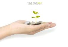 Concept d'investissement Images libres de droits