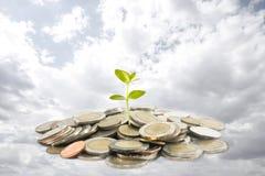 Concept d'investissement Image libre de droits