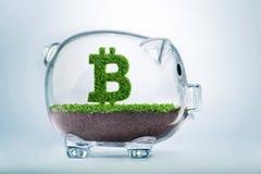 Concept d'investissement de devise de Bitcoin de croissance d'herbe Photos stock
