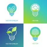 Concept d'énergie d'Eco - icônes d'ampoule avec les feuilles vertes Photos stock