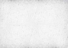 Concept de béton de mur de briques peint par blanc texturisé Photos stock