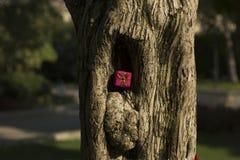 Concept de cadeaux d'arbre de Joyeux Noël et de bonne année Photographie stock libre de droits