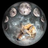 Concept de calendrier lunaire illustration de vecteur