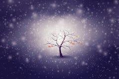 Concept de changement de saison, automne à l'hiver illustration stock