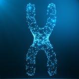 Concept de chromosome X pour le symbole médical Gene Therapy de biologie humaine ou recherche de la génétique de microbiologie co Photo libre de droits
