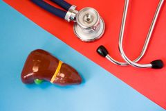 Concept de construction de diagnostic et maladies de détection d'organe digestif et de système endocrinien - foie et vésicule bil images libres de droits
