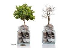 Concept de croissance d'argent de profits et pertes de l'investissement sur le blanc image libre de droits