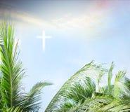 Concept de dimanche de paume : Laisse le cadre des branches de noix de coco avec le fond nuageux de ciel bleu Image stock