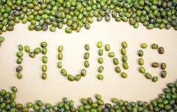Concept de fèves de mung Graines sèches de mung Images stock
