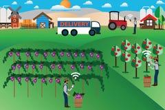 Concept de ferme, marketing en ligne et livraison futés - vecteur Images stock
