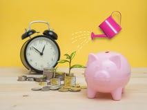 Concept de finances d'économie d'argent de tirelire photographie stock
