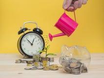 Concept de finances d'économie d'argent de tirelire Image libre de droits
