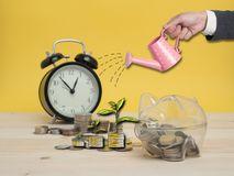 Concept de finances d'économie d'argent de tirelire Photos stock