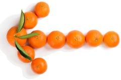 Concept de flèche de mandarines Photographie stock