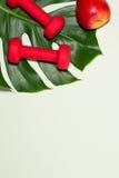 Concept de forme physique Bouteille de jus d'espadrilles, de pomme, d'haltère et de fruit Images stock