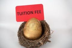 Concept de frais de scolarité Photos libres de droits