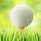 Concept de golf Photo stock
