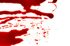 Concept de Halloween : Éclaboussure de sang sur le fond blanc photos libres de droits